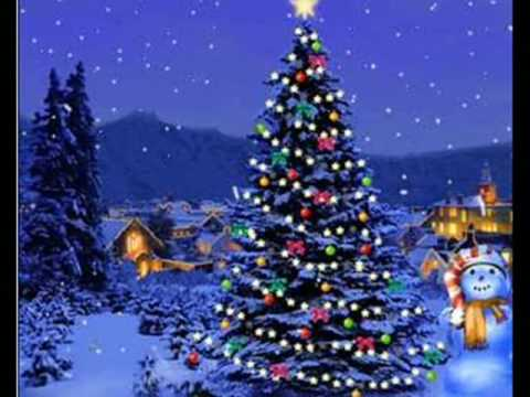 Video Christmas Card