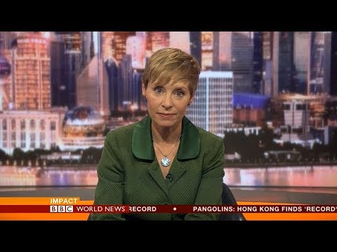 BBC World News Impact - US-North Korea talks