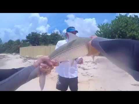 Insane Beach Fishing For Bonefish And Permits