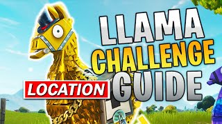 Search Midas golden llama between a junk yard gas station and an RV campsite Location - Midas Guide