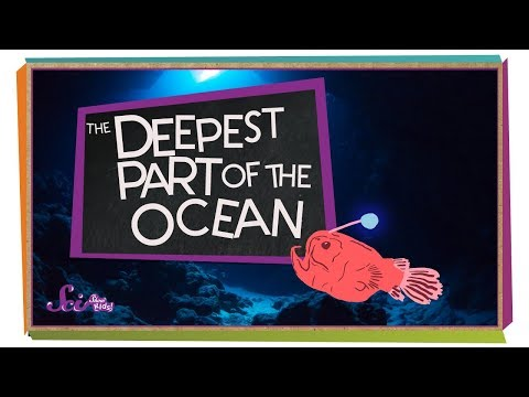 The Deepest Part of the Ocean!
