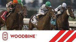 2019 Maple Leaf Stakes (Grade III): Woodbine, November 2, 2019 - Race 8