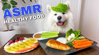 Funny Dog Cooking And Eating Healthy Food (ASMR) I MAYASMR