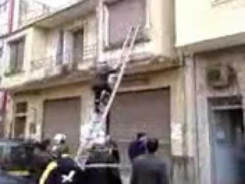 La Protection Civile Sauve Un Chat à Jijel (Algérie)