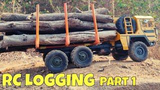 RC MAN LOGGING TRUCK made of WPL & JJRC | PART 1 - RC BUILD & TEST | RC WITH POPEYE