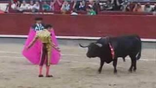 José Tomás sufre tres cogidas pero corta tres orejas thumbnail