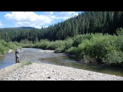 Idaho Fly Fishing Trip