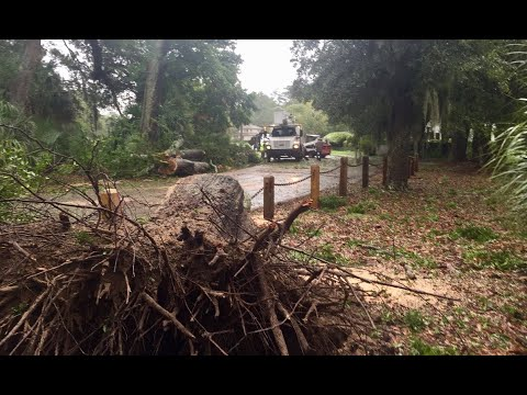 Debris Left In Hilton Head Plantation, South Carolina Neighborhood From Hurricane Dorian