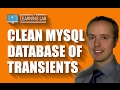 Database Cleaner Plugin That Removes Expired Transients | WP Learning Lab