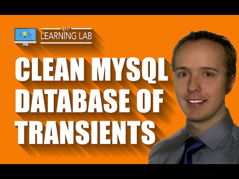 Database Cleaner Plugin That Removes Expired Transients - WP Learning Lab - 동영상