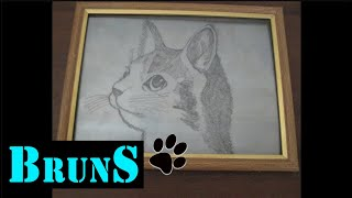 The hard way to draw a cat