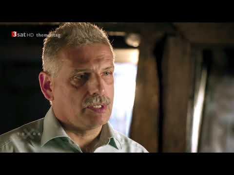 TERRA X: Ein Tag im Mittelalter DOKU/DOKUMENTATION HD deutsch/german 2018