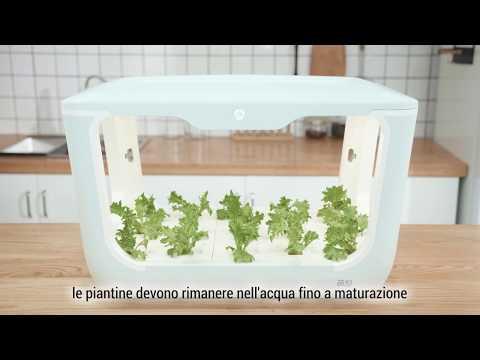 green-farm-il-tuo-orto-in-casa