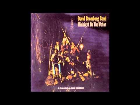David Bromberg - Wonderful World