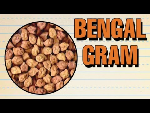 how to pronounce bengal gram ������ pronunciation in