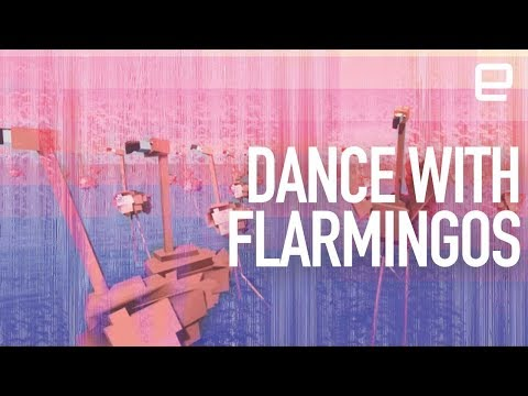 Dancing with virtual flamingos in augmented reality