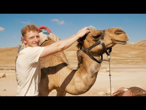 Israel - The Holy Land: A Travel Video