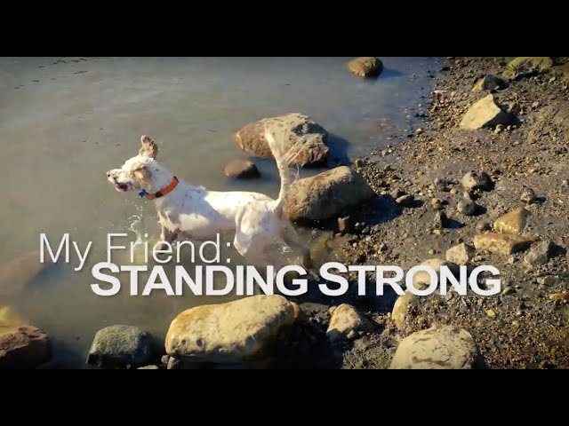 My Friend: Standing Strong Trailer
