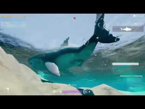 Last Tide: Megalodon