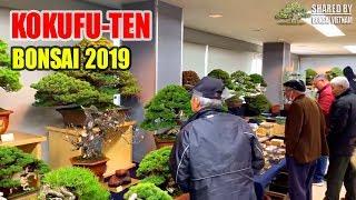 Kokufu-ten 2019 || 93rd Bonsai exhibition in Japan