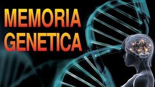 Impactante Teoría de la Memoria Genética