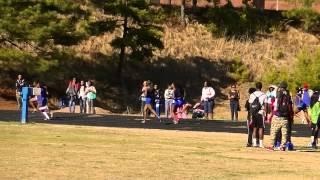 CHS Girls 4x100m relay Stephenson HS Meet 032014