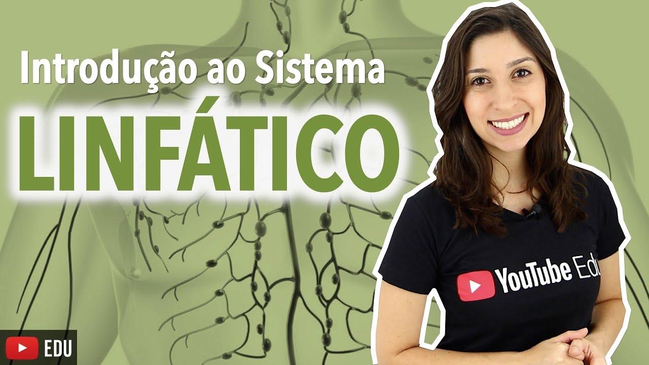 Sistema Linfático 1/4: Introdução | Anatomia e etc - YouTube