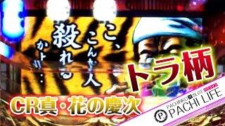 激熱!トラ柄がチラリ。CR真・花の慶次[パチンコ]by Pachi life ~俺のパチライフ~動画 thumbnail