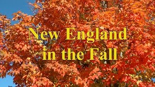 A Tour Around New England to View the Fall Colors ( Autumn Colour) Video