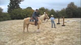 Equitation Western Normande