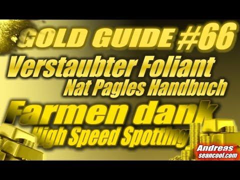 WoW Gold Guide #66 - Verstaubter Foliant (Nat Pagles Handbuch) Farmen dank High Speed Spotting