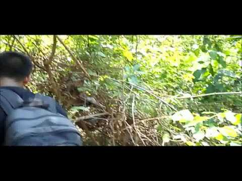 Panchalingeswar, Nilgiri, Chandipur, Kuldiha Forest, Devkund in Orissa. - Part 10