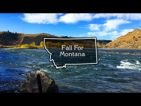'Fall For Montana' | Yellowstone River