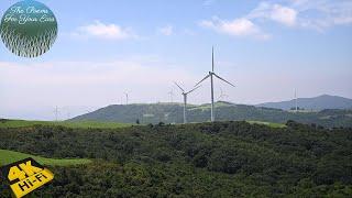 8시간 물소리 와 풍력 발전기 ASMR Nature s…
