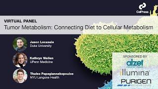 Tumor Metabolism: Connecting Diet to Cellular Metabolism