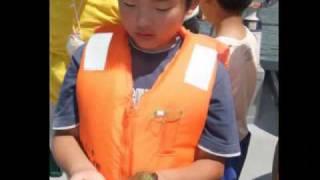 2010.7.18魚のゆりかごアマモ場体験学習~アマモ探検隊~.mpg