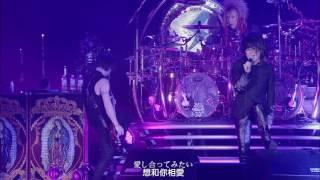 LUNACY 黒服限定GIG 〜the Holy Night〜 2010年12月25日に東京ドーム.