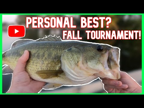 Breaking My Personal Best While Fishing An Online Tournament! (Fall Transition)