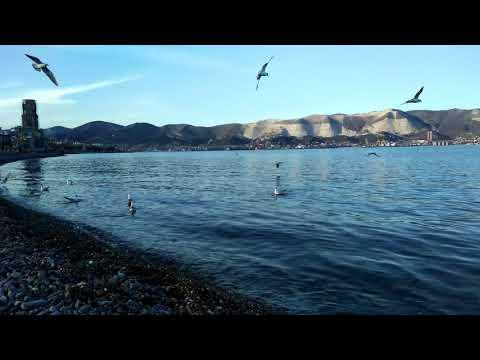 Новороссийск сегодня. Пляж Нептун.