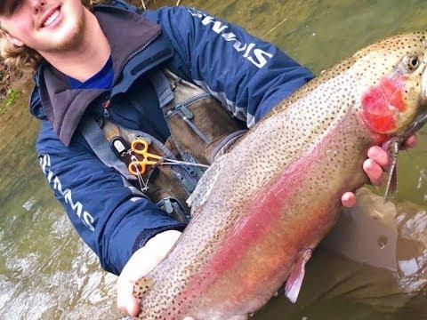 BIG RAINBOW!!! Fishing Trip To Celina, Tennessee