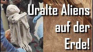 Neueste Untersuchungen ergaben: Nazca Mumien Außerirdisch! 👽