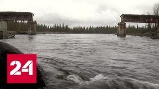 Смотреть видео Пятидесятитонный железнодорожный мост украли в Мурманской области - Россия 24 онлайн