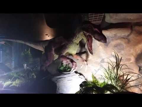공룡 엑스포1