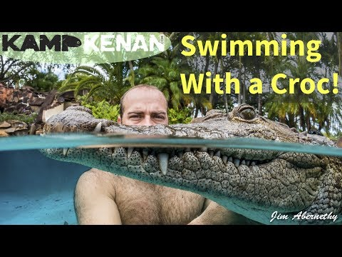 Swimming with a Crocodile and Jeb Corliss!