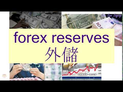 """FOREX RESERVES"" in Cantonese (外儲) - Flashcard"