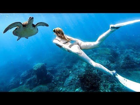 TURTLES & PINK BEACHES! Komodo Islands Sailing Vlog 2019