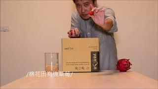棉花田草莓豆漿magic02
