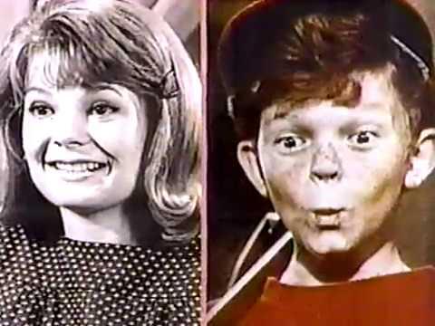 196667 Television Season 50th Anniversary: Family Affair Garver & Whitaker 4992