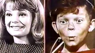 1966-67 Television Season 50th Anniversary: Family Affair (Garver & Whitaker 4/9/92)