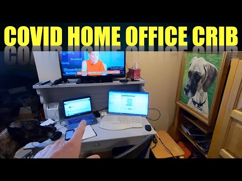 Coburn's COVID Crib home office with my Great Danes